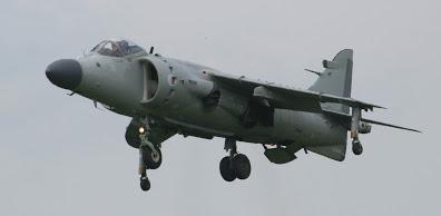 Sea Harrier hovering